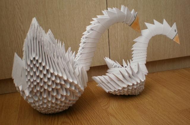фото обоих лебедей